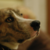 Slider thumb bildschirmfoto 2015 05 20 um 12.42.37