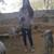 Slider_thumb_imag0004