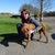 Slider thumb fotoalbum hund1