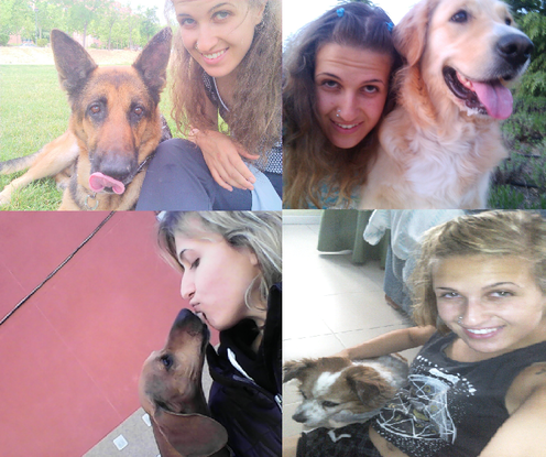 Slider_perros