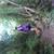 Slider_thumb_img_20150530_131254