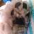 Slider thumb imag5514