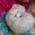 Slider thumb imag5627