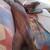 Slider thumb imag4747