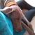 Slider thumb imag4893