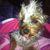 Slider_thumb_adriano_068