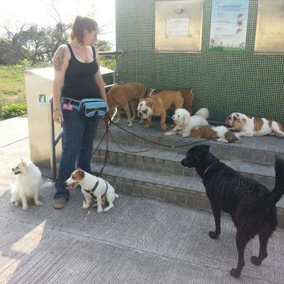 Slider_dogs