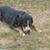 Slider thumb p7120412
