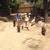 Slider_thumb_perritos_de_paseo