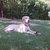Slider thumb imagen0292