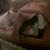 Slider thumb img 7089