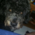 Slider thumb 2015 12 31 17.44.00