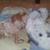 Slider_thumb_2012-11-16_15.20.10
