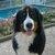 Slider_thumb_2012-12-10_14.07.17-1