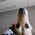 Slider thumb img 20160401 103049