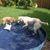 Slider_thumb_piscina