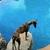 Slider_thumb_helios_roca_1