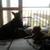 Slider_thumb_20160527_202723_-_copia
