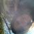 Slider thumb aur lie   img 0937