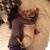 Slider_thumb_img_7107