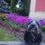 Slider_thumb_img_24092016_195725