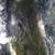Slider thumb img 0614
