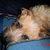 Slider_thumb_cimg0057__2_